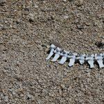 Áridos reciclados: ¿qué son?