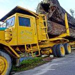 El camión remolque