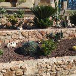 Cómo hacer un jardín seco